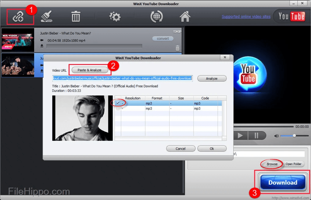 WinX YouTube Downloader télécharger playlist youtube