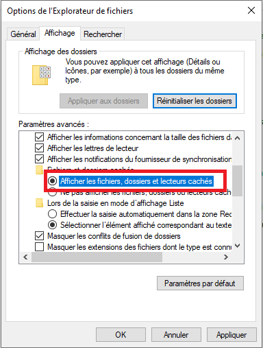 dossiers cachés windows 10